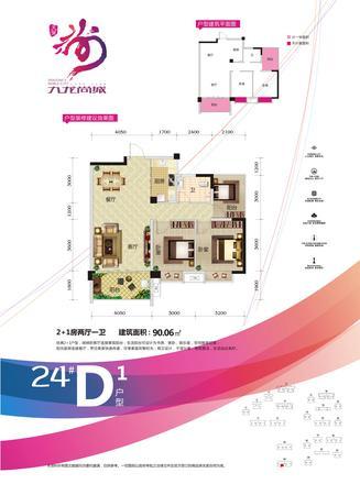 24#D1户型