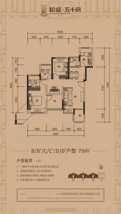 79平户型.JPG