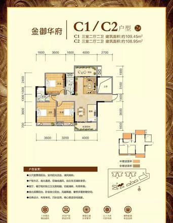 C1/C2