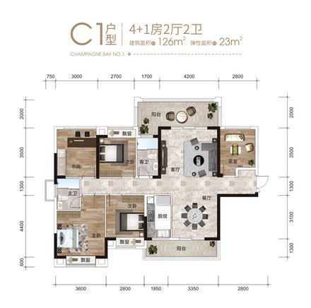 4+1房C1户型
