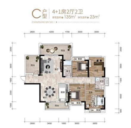 4+1房C户型