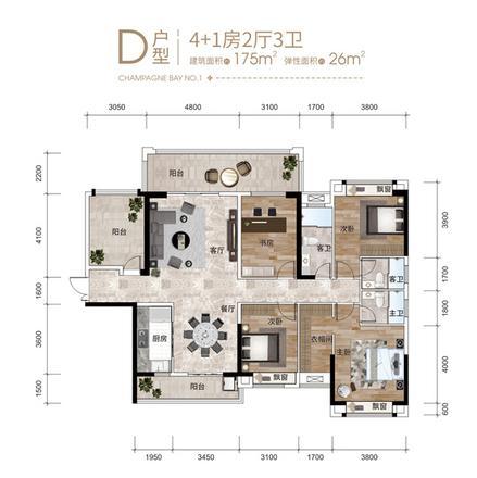 4+1房D户型