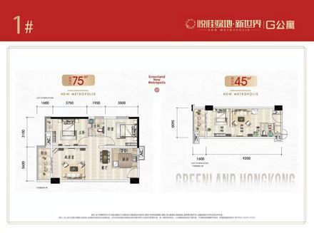 G公寓户型图