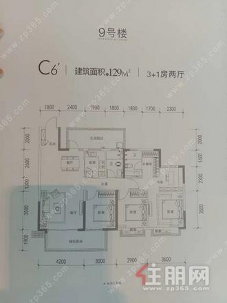 9#C6'户型129㎡
