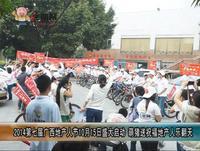 2014第七届广西地产人节10月15日盛大启动  萌猪送祝福地产人乐翻天