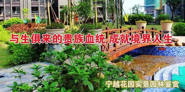 【项目专题】宁越花园 园林鉴赏