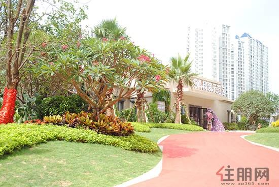 景观区和宅间绿地区
