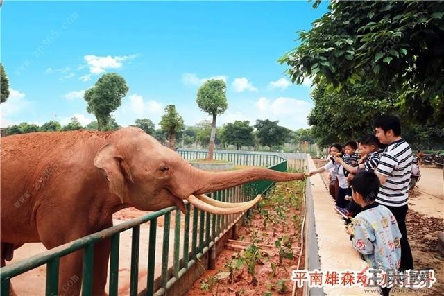 贵港平南雄森动物大世界28日开园!