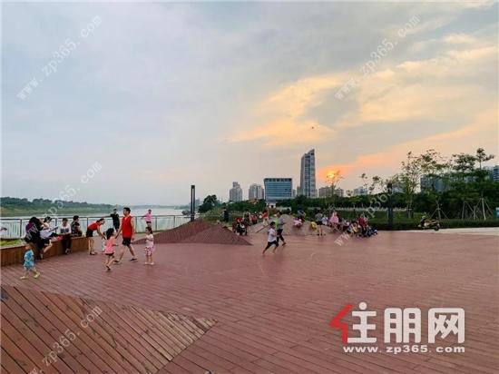 滨江公园实景图.jpg