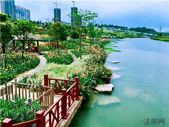 中海九玺那考河湿地公园.jpg