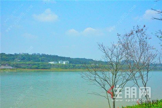 江璟湖4.jpg