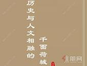 【碧桂园金科·博园府】正统中式盛景大境,以匠心致敬贵港