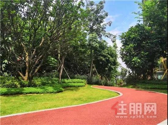 园林1.jpg