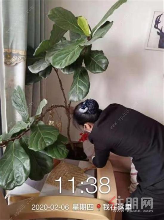 幫業主為家里的鳥籠提供消殺服務.jpg