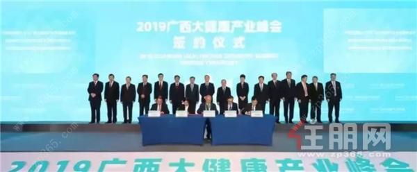 2019广西大健康产业峰会开幕式在南宁举行.png