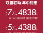 双盘联动丨中地置业年中钜惠,敬献钦城!