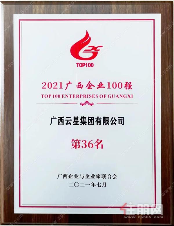 广西云星集团连续10年蝉联广西企业100强