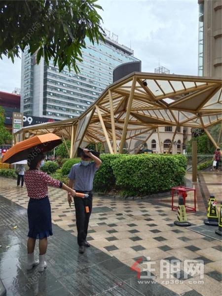 龙胤花园工作人员派发雨伞6.jpg