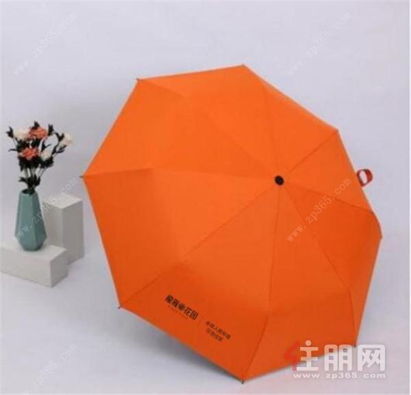 龙胤花园雨伞.jpg