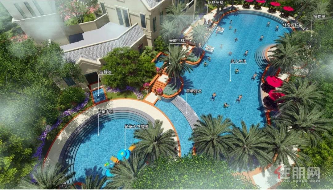项目泳池.jpg