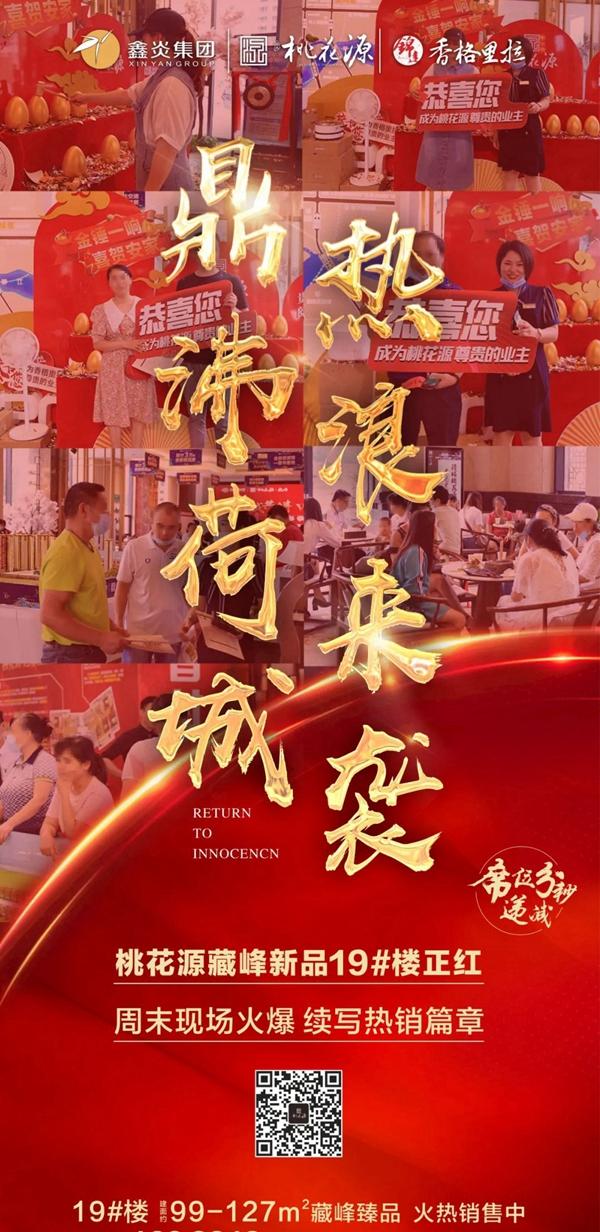 藏峰新品19#楼霸气海报图
