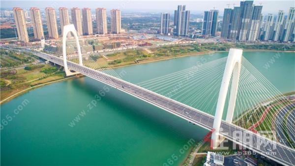 青山大桥实景图