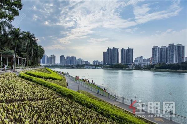 西园半岛滨江实景图