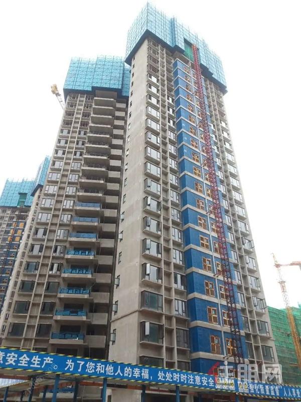 碧桂园中央上城11#楼