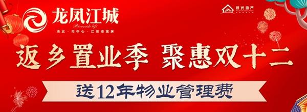 贵港龙凤江城海报图