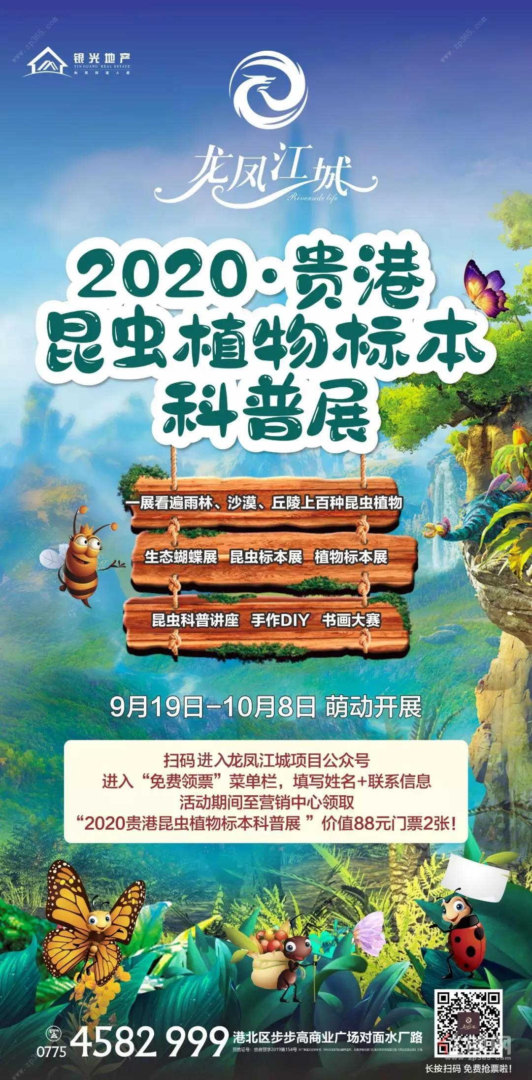 龙凤江城动植物标本配图