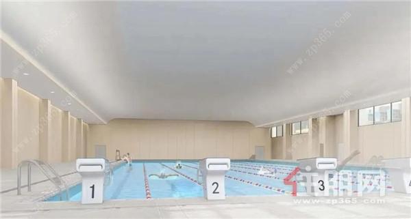 学校泳池效果图.jpg