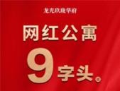 龙光·玖珑华府:距地铁仅600米,9字头购LOFT公寓!