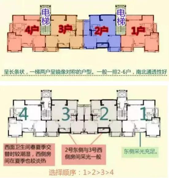 板式住宅设计图.jpg