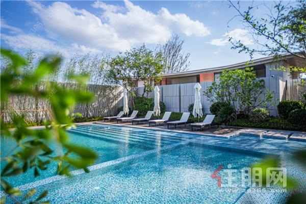 度假风泳池实景图