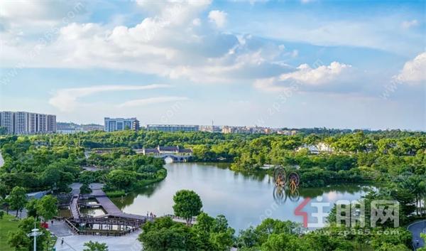 新坡湖.jpg