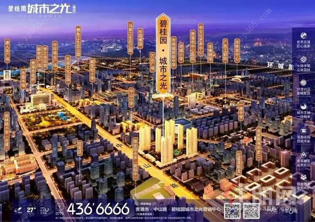 碧桂园·城市之光鸟瞰图