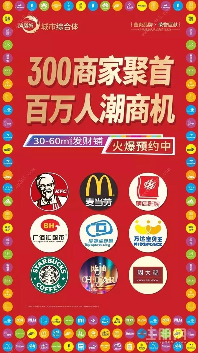 凤凰城宣传海报