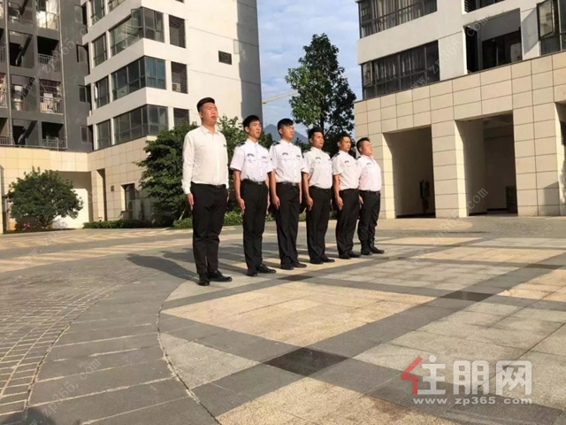 鑫炎·凤凰城宣传海报实拍