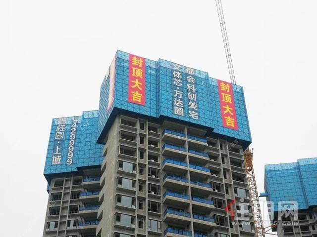 碧桂园·中央上城8号楼盘