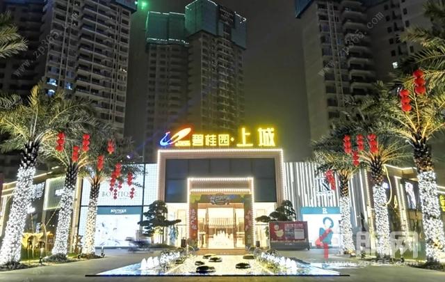 碧桂园·中央上城营销中心