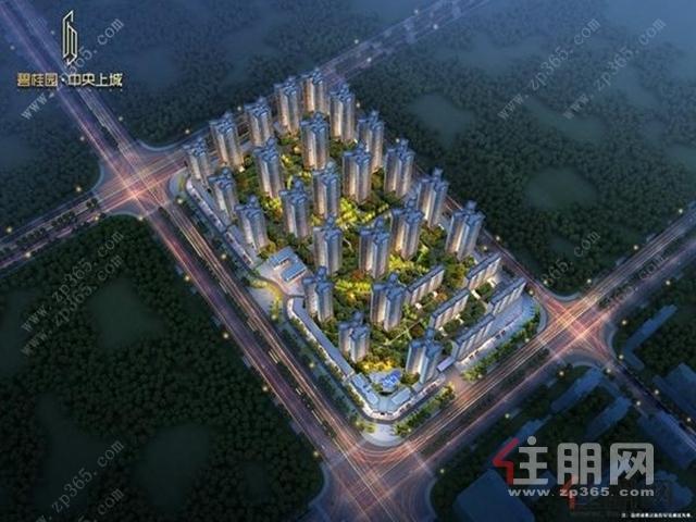 碧桂园·中央上城夜景鸟瞰图