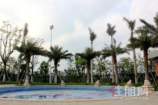 贵港滨江公园室外泳池实景