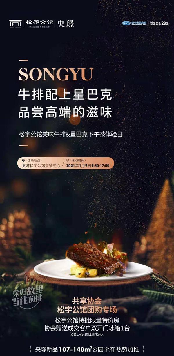 松宇公馆海报图