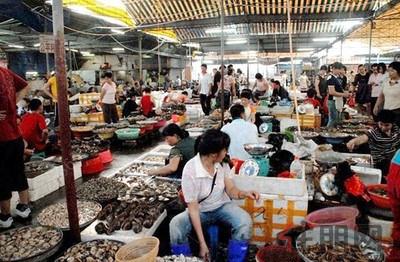 投资快报:江南海鲜市场即将进驻保利中央商城西