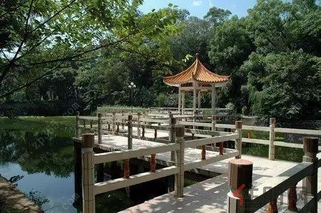 广西大学     青秀山风景区     还是国际化大都市     南宁如今