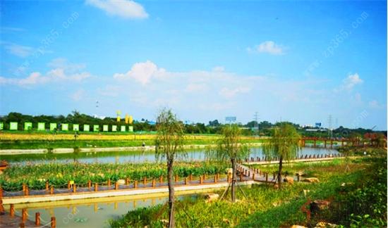 从盛名全球的富人区美国纽约长岛湿地别墅区,到佛罗里达湿地棕榈