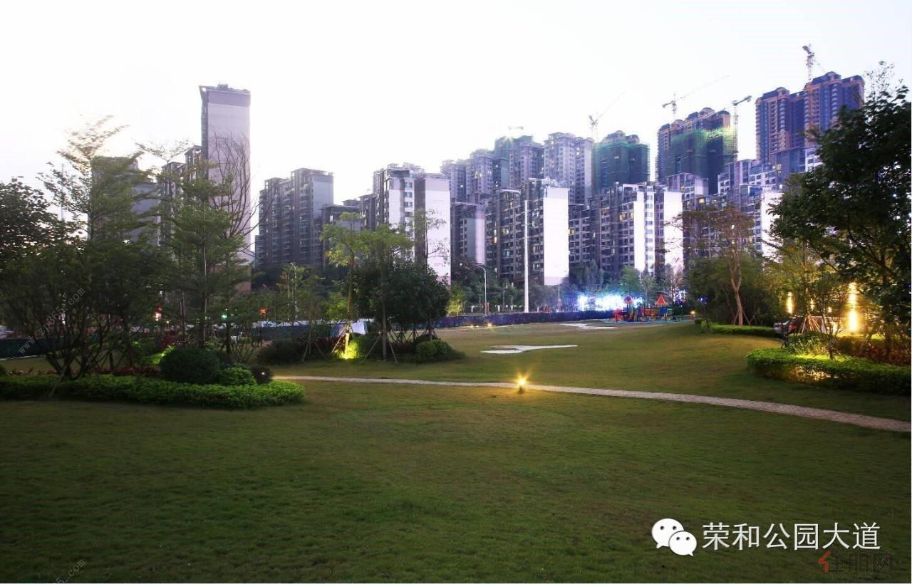 家门口的市政公园绿地里,享有宽阔草地任一家人在阳光下尽情奔跑