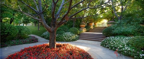 景观,并将台阶,跌水,休闲广场,花坛,雕塑,植被,欧式廊亭等丰富的欧洲