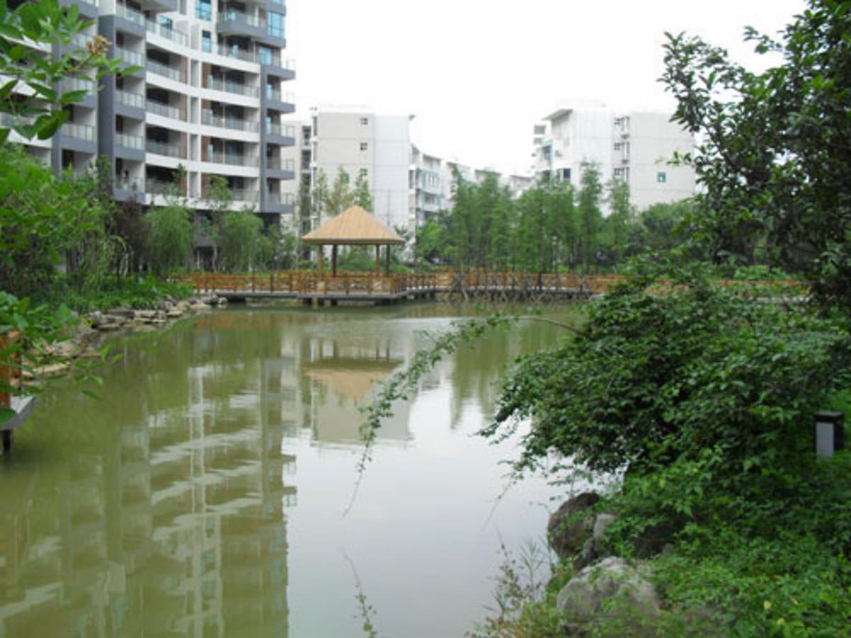 碧园·印象桂林实景图