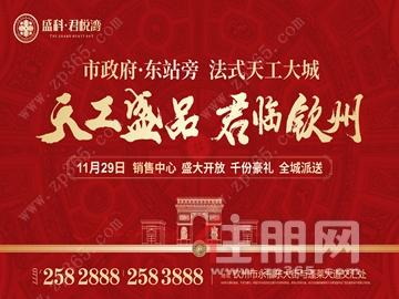 盛科·君悦湾 法式天工大城